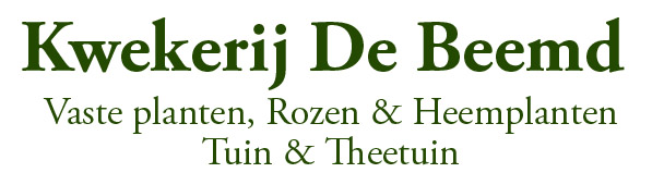 Kwekerij De Beemd,  Vaste planten, Rozen & Heemplanten - Tuin & Theetuin